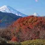 Япония, день 6: Хаконэ. Фудзи!