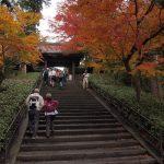 Япония, день 8: Камакура. Великий Будда