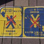 Япония, день 15 и последний: Одайба