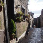 Окрестности Неаполя. Казерта Веккья